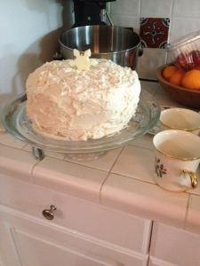 I added a white chocolate snow flake to make it a winter cake