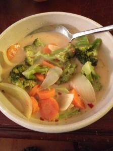 Chicken vegetable soup for the soul
