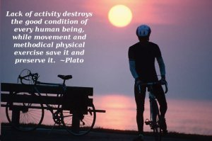 Plato-and-Exercise