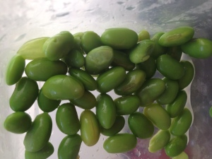 Edamame is a great snack