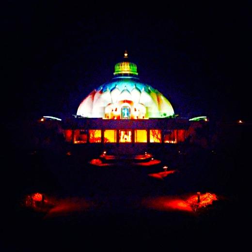 the lotus at night