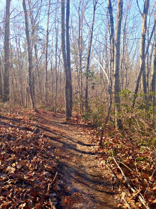 Yogaville trails